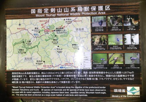 剣山の生き物情報看板