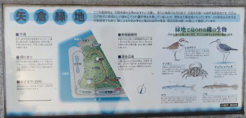 矢倉緑地の地図・生き物