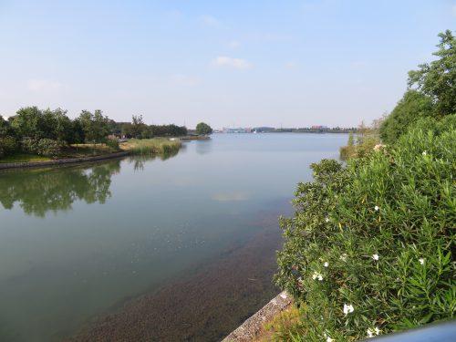 星願湖 上海ディズニーランドの向かいの湖